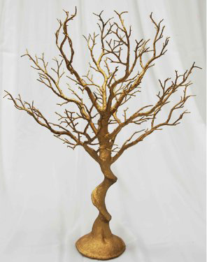 Potted Manzanita Tree